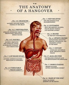anatomy-of-a-hangover-BIG